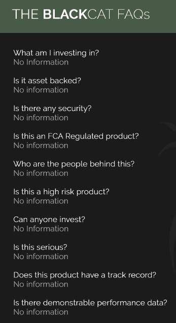 Black Cat investment FAQs